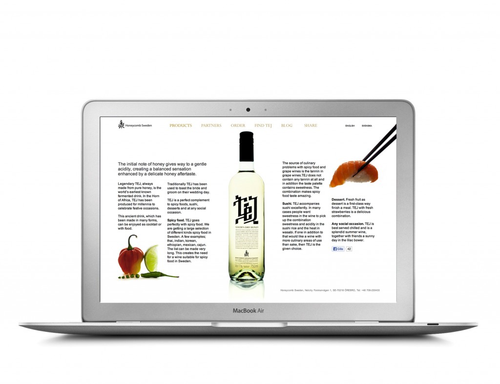 Art Direction_Websites_009_tej